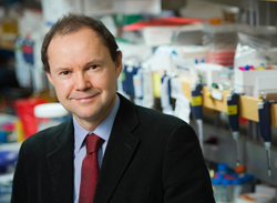 David Huntsman receives inaugural research award from Ovarian Cancer Canada
