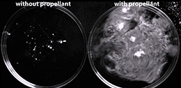 Christian Kastrup's anticoagulant in vitro.
