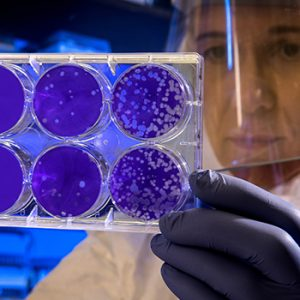 New funding accelerates COVID-19 research at UBC