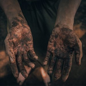 Soil in wounds can help stem deadly bleeding