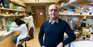 New treatment strategy could overcome drug resistance in pancreatic cancer