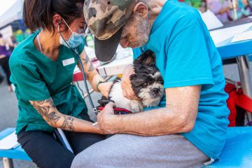 Supporting pets and their people in the DTES